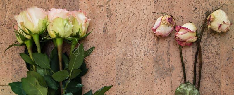 Bouquets frais et secs images stock