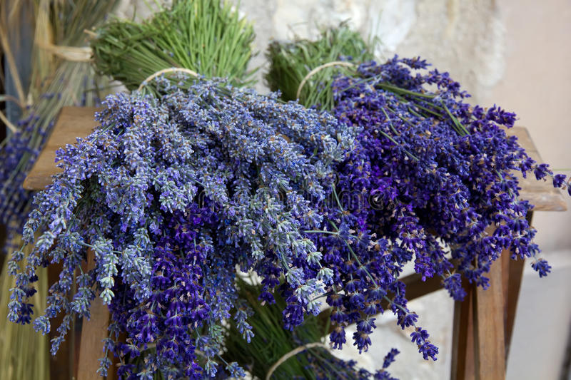 Bouquets of lavender, close up. Lavender bunches tied together with string, lying on wooden table for sale. Provence, France stock images