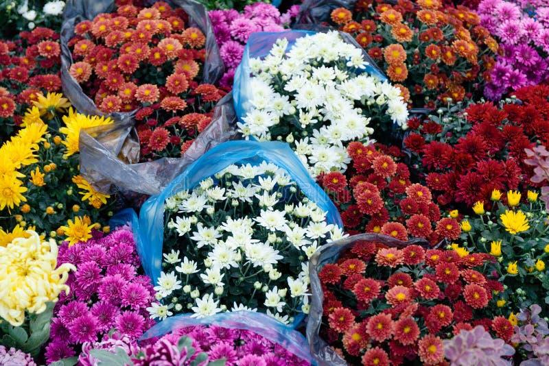 Bouquets magasin, magasin de fleur de jardin Belle vente de flore photo stock