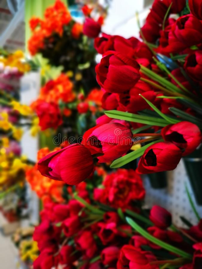 Bouquets of red tulips for sale. And other kinds of flowers in the background royalty free stock image