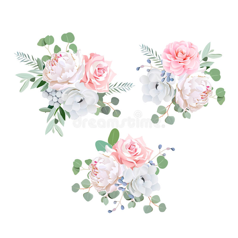 Bouquets of rose, peony, anemone, camellia, brunia flowers and eucaliptis leaves. Vector design elements royalty free illustration