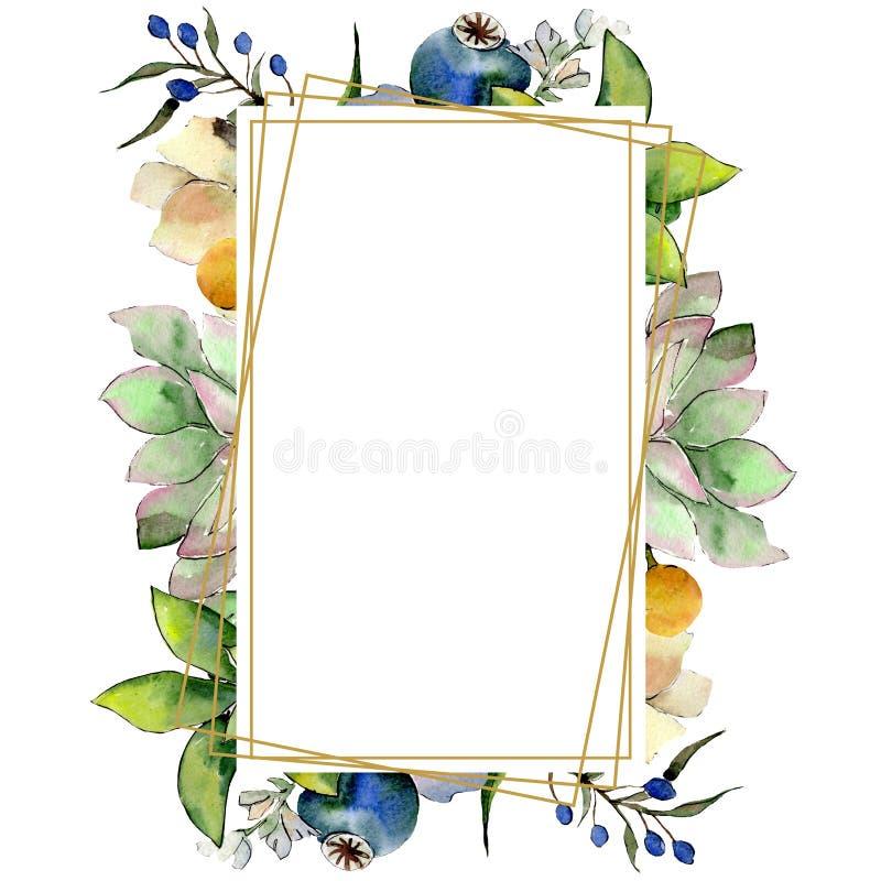 Bouquets with succulent botanical flowers. Watercolor background illustration set. Frame border crystal ornament square. Bouquets with succulent floral royalty free illustration