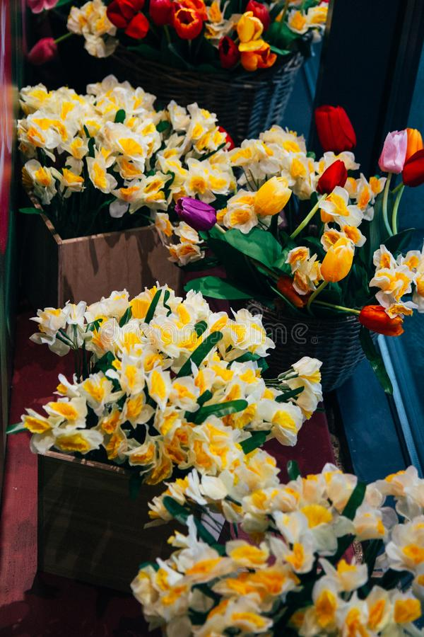 bouquets of yellow daffodils and red tulips stand in flower beds on a glass showcase royalty free stock images