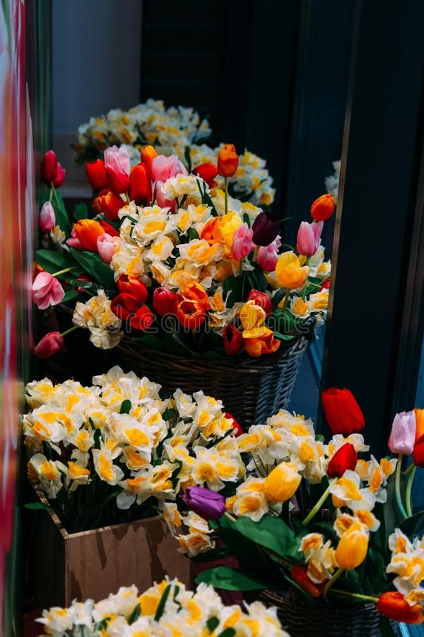 Bouquets of yellow daffodils and red tulips stand in flower beds on a glass showcase. Buy a gift stock photos
