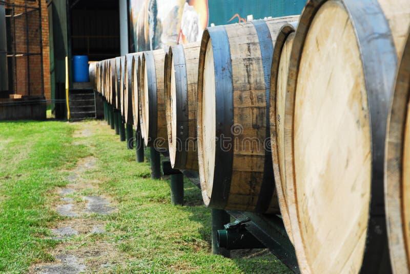 Bourbon-Fässer stockfotos