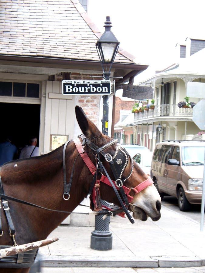 Bourbon-Straßenschild mit Maultier New Orleans lizenzfreies stockfoto