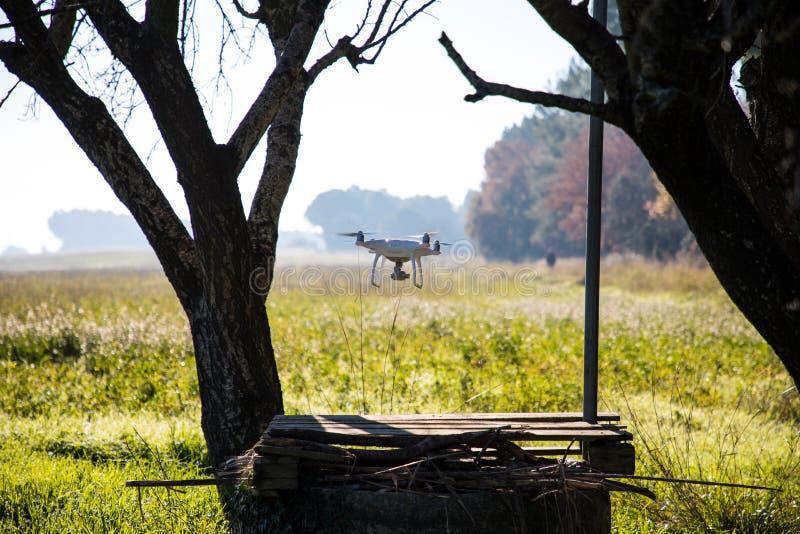Bourdon au-dessus de puits d'eau et sous l'arbre le matin ensoleillé d'hiver images stock