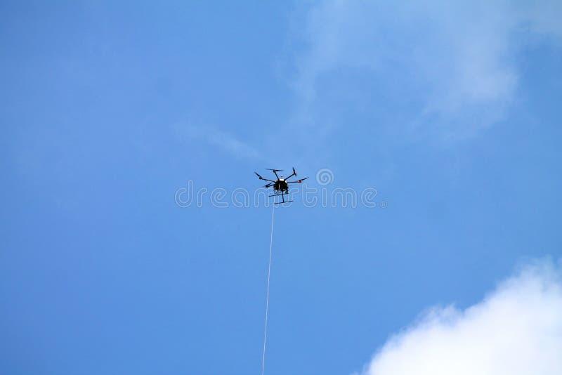 Bourdon dans une laisse planant dans le ciel bleu photo stock