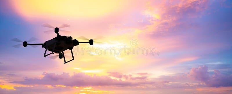 Bourdon de vol en ciel illustration stock