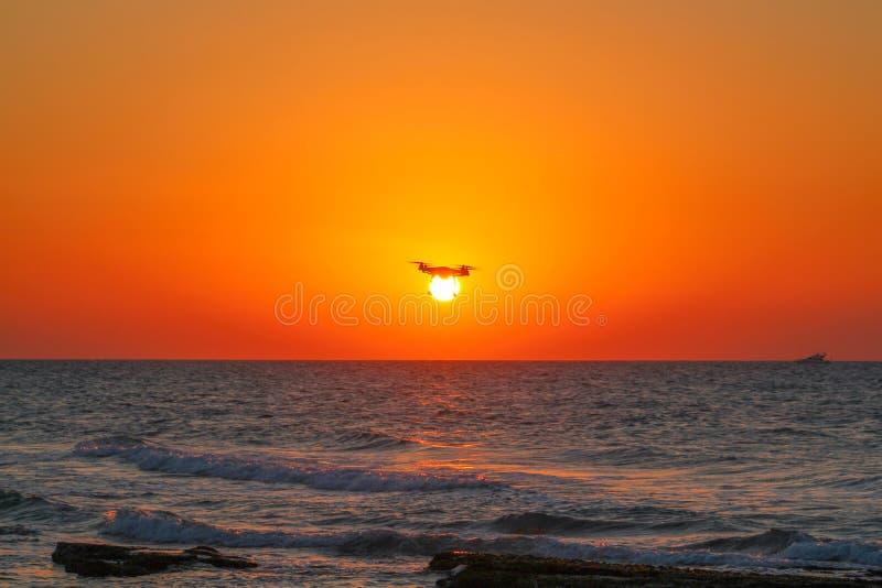 Bourdon sur le coucher du soleil par la mer photo stock