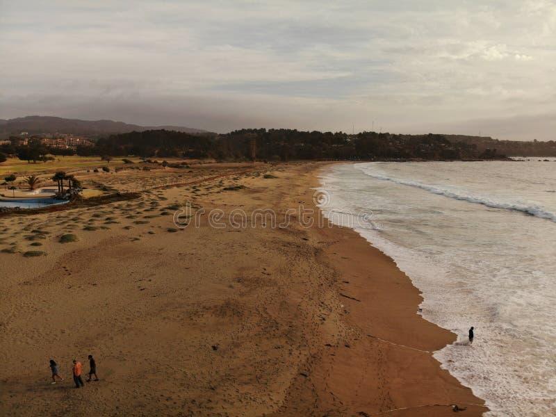 Bourdon sur une mer et un San de plage photos libres de droits