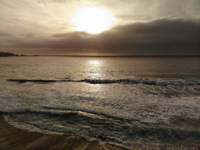 Bourdon sur une mer et un San de plage image libre de droits
