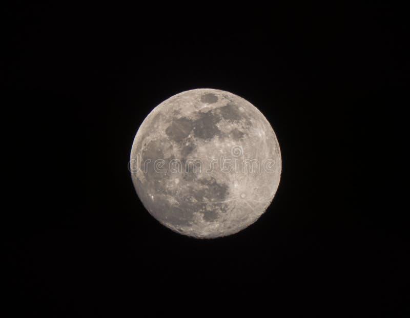 Bourdonné dans la lune presque pleine dans un ciel nocturne photo stock