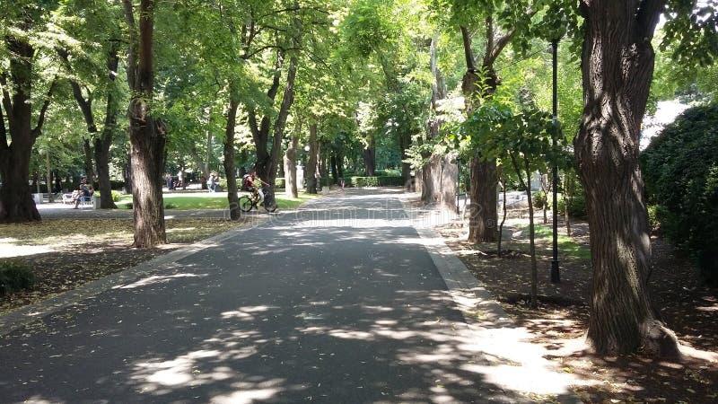 Bourgas-Seegarten lizenzfreie stockfotografie