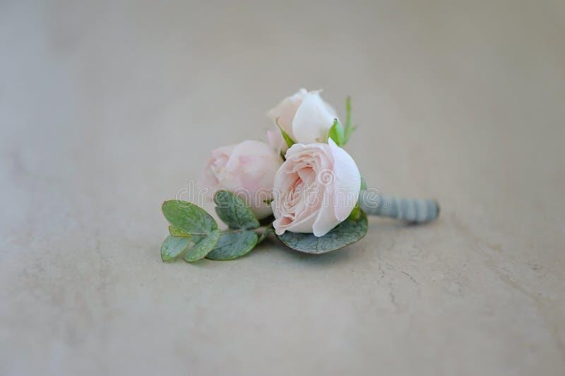 Bourgeon de Rose dans le boutonniere tenderless, plan rapproché image libre de droits