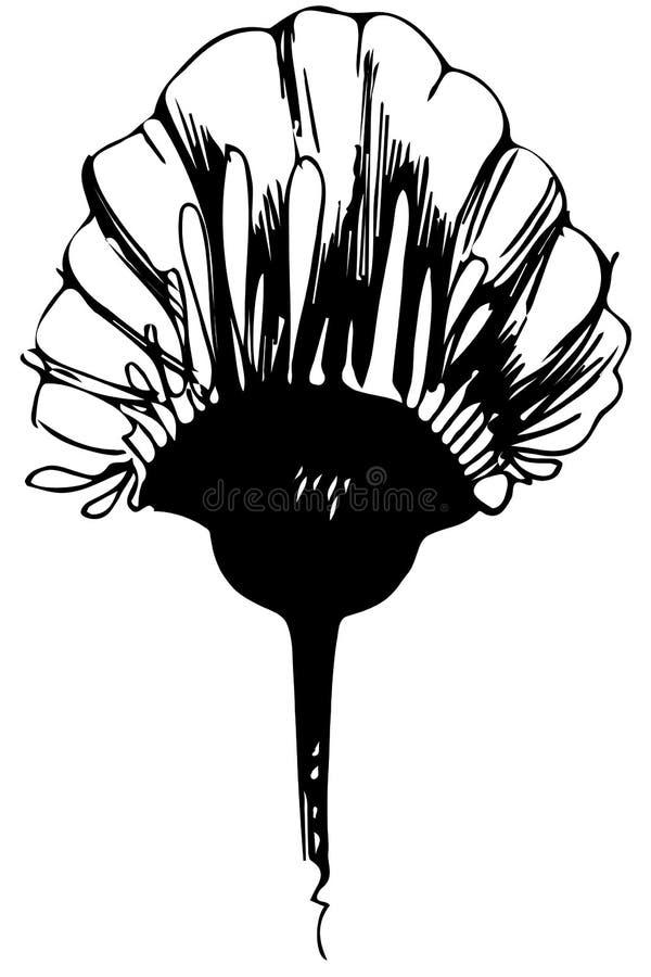 Bourgeon floral de croquis de vecteur sur la tige illustration stock