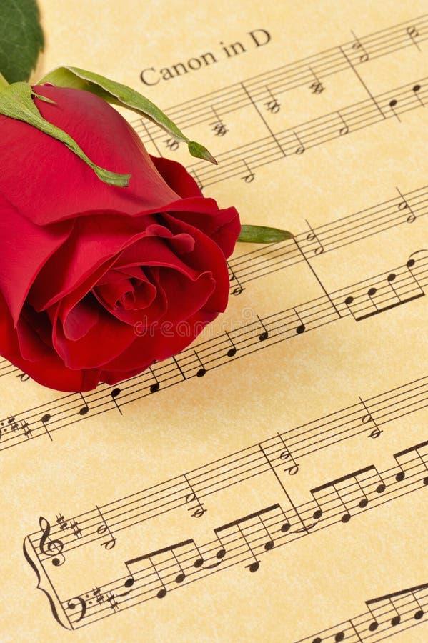 Bourgeon rouge de Rose sur la musique de feuille photos libres de droits
