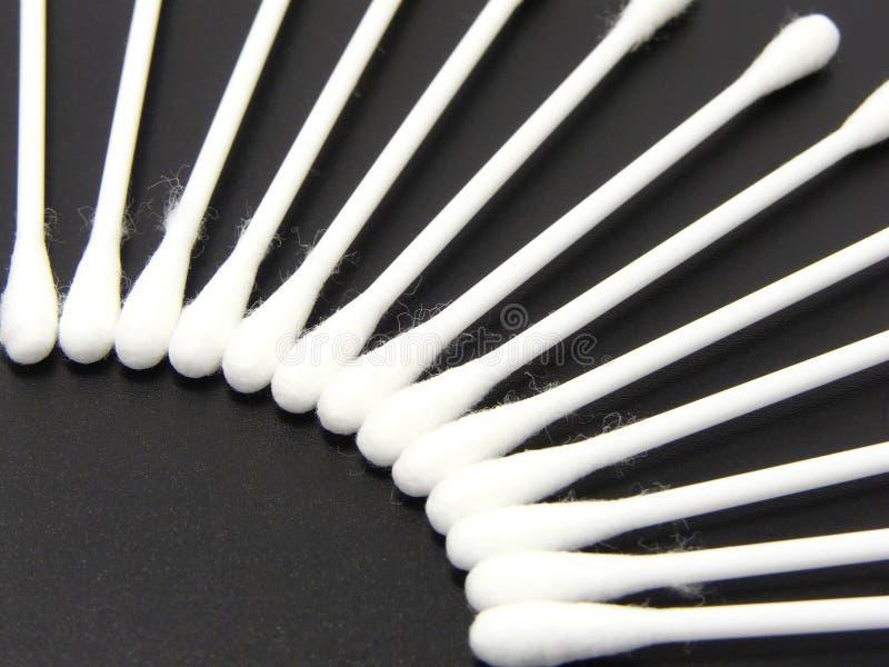 Bourgeons de coton images stock