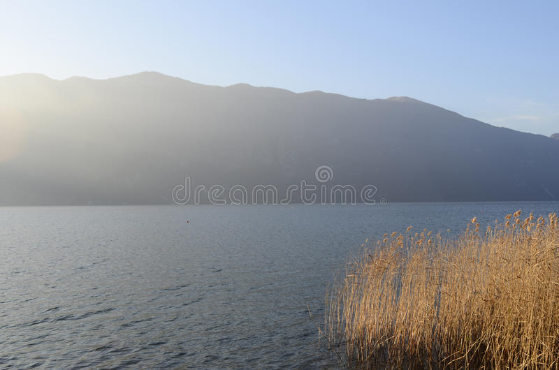 Bourget lake and mountains. Tranquil water of Bourget lake, mountains of Chat and reeds bed royalty free stock images
