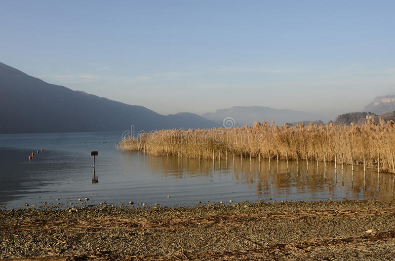 Bourget lake and mountains. Tranquil water of Bourget lake, mountains of Chat and reeds bed stock images