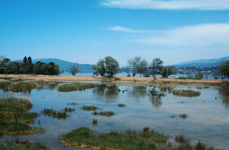 Bourget lake and mountains. Tranquil water of Bourget lake, mountains of Chat and reeds bed royalty free stock image