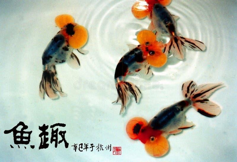 Boursoufle le ‰ ˆBubble de ¼ d'eyeï de ¼ d'ï de poisson rouge illustration stock