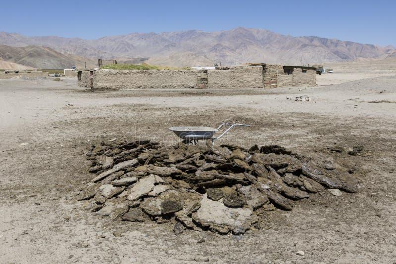 Bouse de vache sèche dans Bulunkul dans le Tadjikistan photographie stock libre de droits