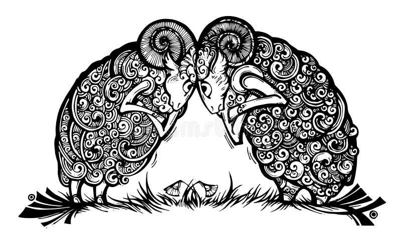 Bout fâché de deux agneaux photos stock