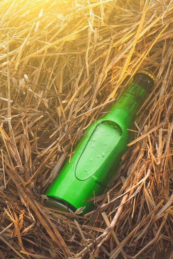 Bouteille à bière dans la pile de foin images libres de droits