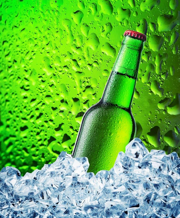 Download Bouteille à Bière Verte En Glace Image stock - Image du cube, baisse: 77156143