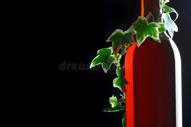 Bouteille avec le vin rouge et le vert photographie stock