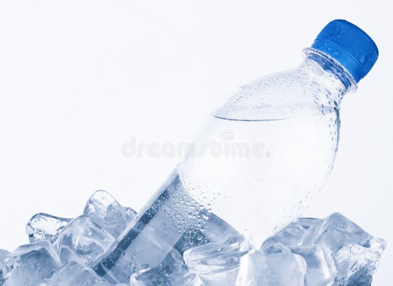 Bouteille d'eau photographie stock libre de droits
