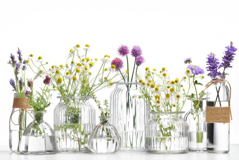 Bouteille d'huile essentielle avec des herbes photo libre de droits