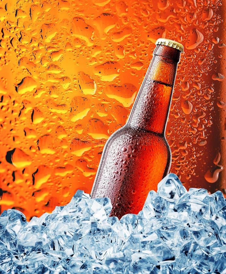 Download Bouteille De Brown De Bière Dans La Glace Photo stock - Image du bouteille, groupe: 77158660