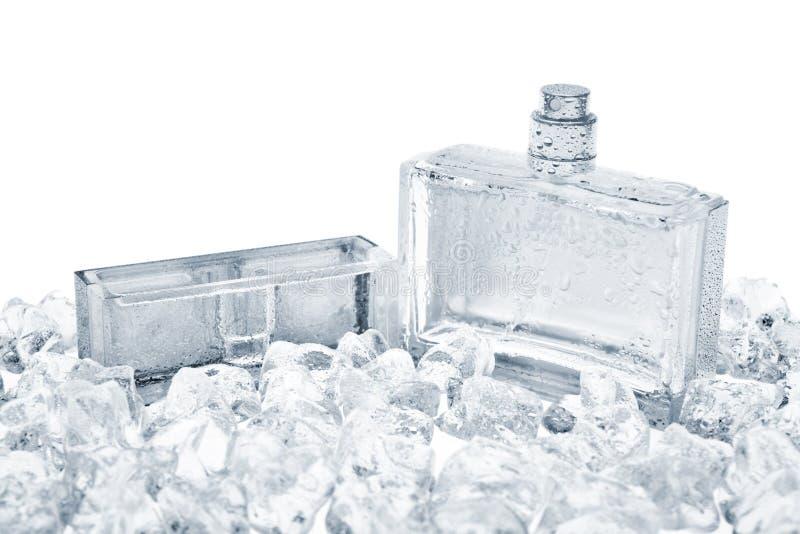 Bouteille de parfum image stock