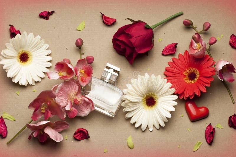 Bouteille de parfum du ` s de femmes sur un fond brun clair photo stock