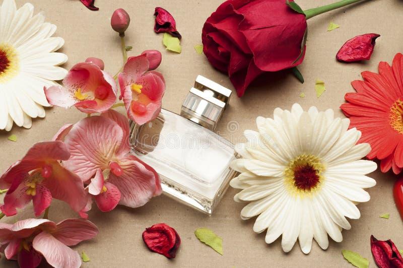 Bouteille de parfum du ` s de femmes sur un fond brun clair photographie stock