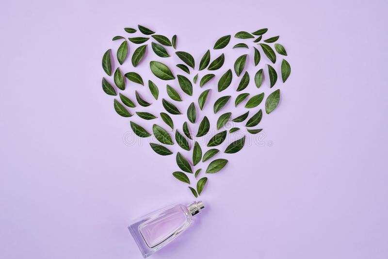 Bouteille de parfum et de feuilles vertes disposés dans la forme de coeur au-dessus du fond violet Ressort ou parfum doux d'été p images libres de droits