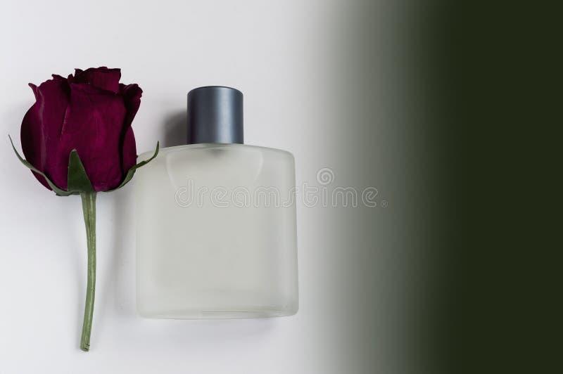 Bouteille de parfum masculin sur un fond blanc photographie stock libre de droits