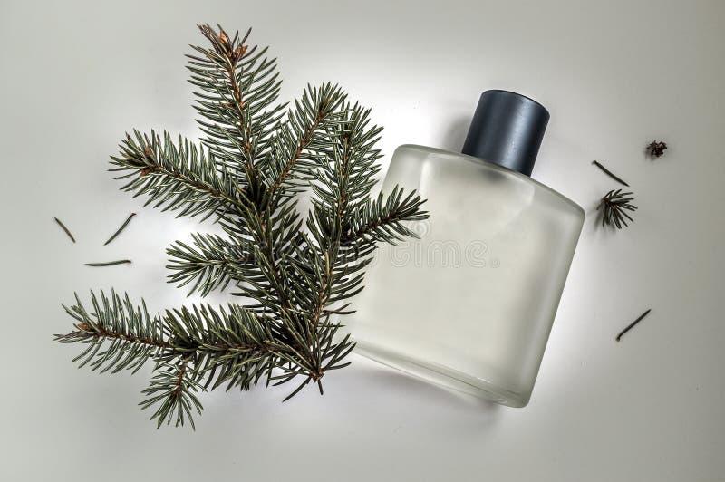 Bouteille de parfum masculin sur un fond gris images libres de droits