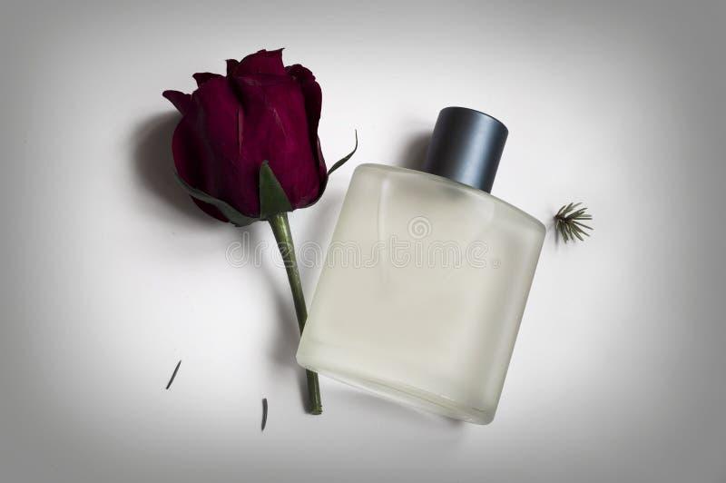 Bouteille de parfum masculin sur un fond gris images stock