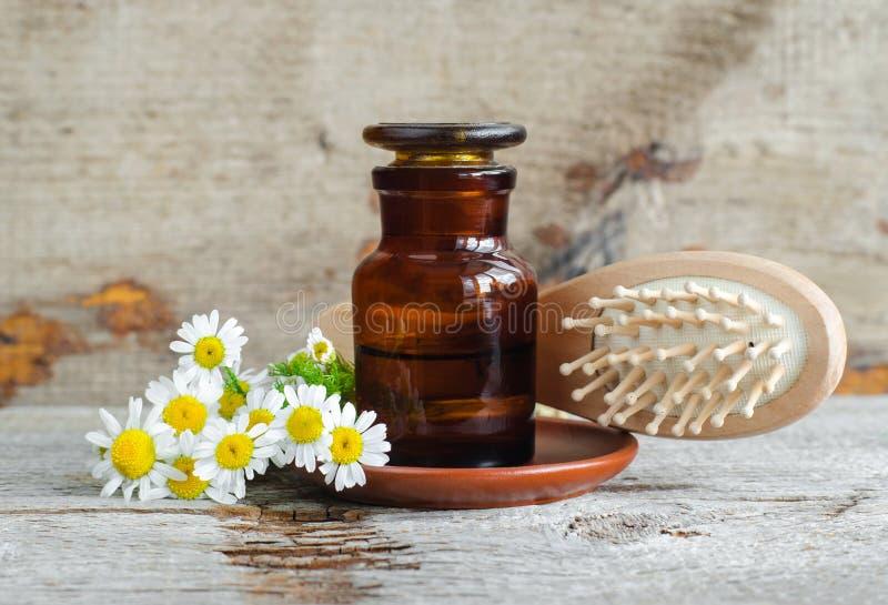 Bouteille de pharmacie avec l'extrait romain d'huile essentielle de camomille, la teinture, l'infusion et la brosse de cheveux en image stock