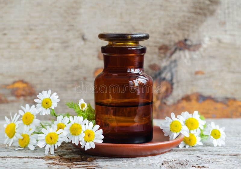 Bouteille de pharmacie avec l'extrait romain d'huile essentielle de camomille, teinture, infusion Vieux fond en bois image libre de droits