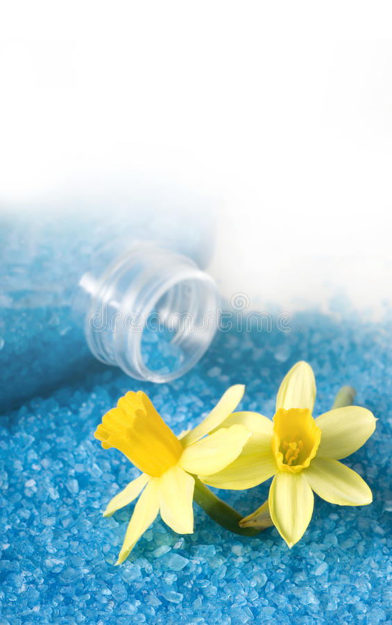 Bouteille de sel pour le bain avec des jonquilles image libre de droits