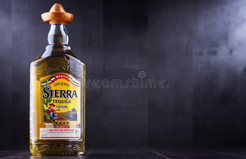 Bouteille de sierra tequila photo stock
