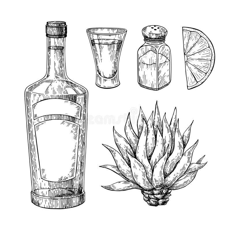 Bouteille de tequila, agave bleu, dispositif trembleur de sel et verre à liqueur avec la chaux Dessin mexicain de vecteur de bois illustration stock