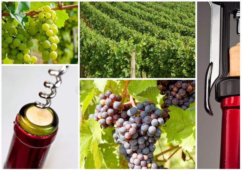 Bouteille de vin avec le tire-bouchon photographie stock