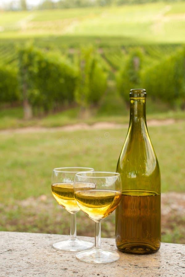 Bouteille de vin d'Alsace photos stock