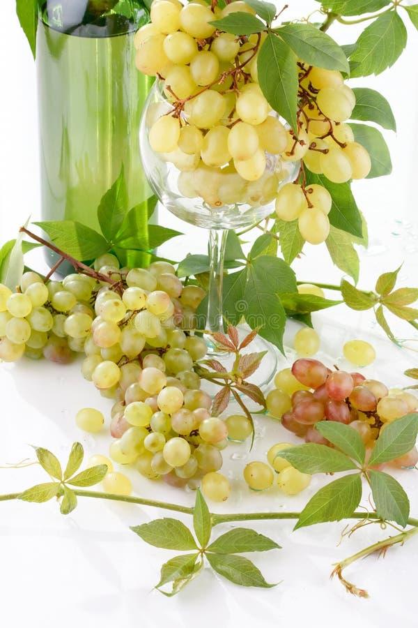 Bouteille de vin et jeune raisin photo stock