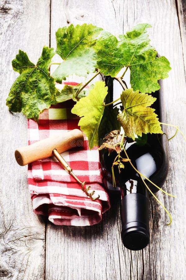 Bouteille de vin rouge avec la vigne photos stock